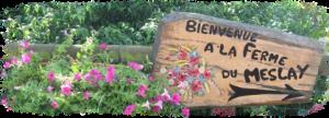 La ferme du Meslay - Grand gite de réception
